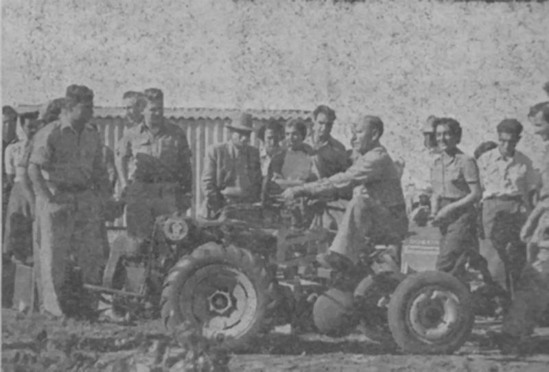 חקלאות  בשנת  1950