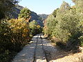 Pilio narrow gauge line - 6.JPG