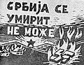 Plakat Srbija se umirit ne može.jpg