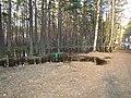 Pludi druvciema 2011 - panoramio (39).jpg