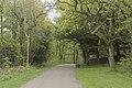 Pollok Park footpath (geograph 5768948).jpg