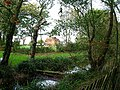 Pond, Spring Lane, Clayton - geograph.org.uk - 74514.jpg