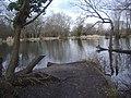 Pond on Eastwick Drive, Bookham - geograph.org.uk - 1775767.jpg