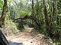 Portal na Estrada Prados - MG - panoramio.jpg