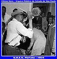 Portela 1954 12.jpg