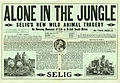Press sheet for ALONE IN THE JUNGLE, 1913 (Page 1).jpg