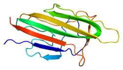 Protein COL10A1 PDB 1gr3.png