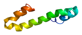 Protein RTN4 PDB 2g31.png