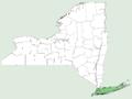 Prunus maritima NY-dist-map.png