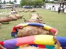 Photo en couleur montrant des cochons cuits, disposés régulièrement sur le sol les pattes en l'air. Des nattes colorées sont posées sur certains d'entre eux. Des voitures sont visibles à l'arrière plan, quelques personnes marchent sur le côté. Un groupe de personnes est assis sur une natte sur le côté gauche de la photo.
