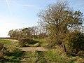 Public Footpath near Saxby - geograph.org.uk - 590425.jpg