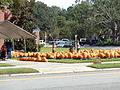Pumpkin Patch, Park Avenue United Methodist Church 2, Valdosta, 2015.JPG