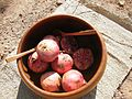 Punica granatum fruit - Kelin.jpg