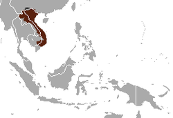 Pygmy Slow Loris area.png