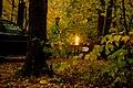 Pyromania (1539000647).jpg