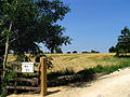 Quarry Farm Entrance near Ampney St Mary's - geograph.org.uk - 22399.jpg
