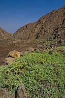 Quebrada La Chimba.jpg