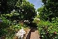 Quinta das Vinhas ^ Cottages, Estreito da Calheta, Madeira, Portugal, 27 June 2011 - Alley to the stone cottages - panoramio.jpg