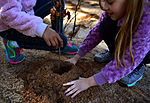 RES students plant trees for Earth Day 150422-F-NH180-004.jpg