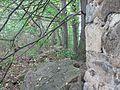 Radebeul Blechburg Details 14.jpg
