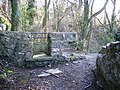 Redundant Stile on the Leete Path - geograph.org.uk - 313426.jpg