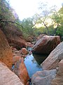Reflections in Pine Creek - Zion National Park DyeClan.com - panoramio.jpg