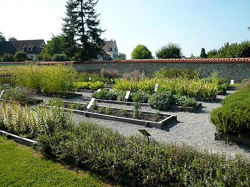 Kloster Reichenau Kraeutergarten mit Pfalzen aus dem Buch Hortulus (Strabo)