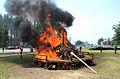 Republika Kongo spálila v Brazzaville 4,6 tuny slonoviny.JPG