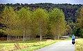 Rigny-Ussé-114-Erlen-2008-gje.jpg