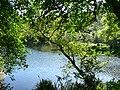Rio Ulla . Touro - panoramio.jpg