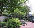 Ripley Garden in April (17588796636).jpg