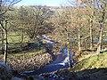 River Cover, near Braidley - geograph.org.uk - 115616.jpg
