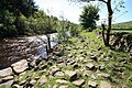 Riverside Path - geograph.org.uk - 1359002.jpg