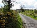 Road at Clonkeen (geograph 2914435).jpg