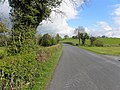 Road at Drumminnion (geograph 2914392).jpg