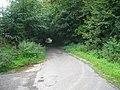 Road to Eglingham - geograph.org.uk - 1498703.jpg