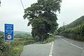 Road to Felindre - geograph.org.uk - 1339027.jpg