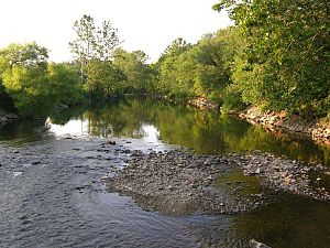 Roanoke River - Roanoke River in Wasena, Virginia