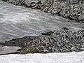 Rock and snow (5ef6830668da44a2b5967ee99ad786db).JPG