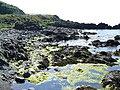 Rocky coastline - geograph.org.uk - 462443.jpg
