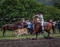 Rodeo Event Calf Roping 39.jpg