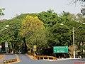 Rodovia SP-328 que liga Ribeirão Preto ao distrito de Bonfim Paulista e a cidade de Cravinhos, Araraquara e São Carlos. Do Km-306 ao Km-307, a rodovia passe pelo distrito de Bonfim Paulista. - panoramio.jpg