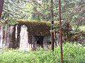 Rokytnice v Orlických horách, Panské Pole, R-S 73 (rok 2010; 04).jpg