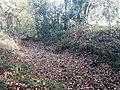 Roman earthwork defences, Silchester 09.jpg