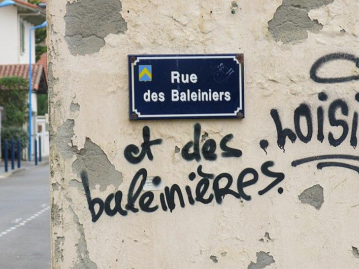 Rue des baleiniers et des baleinières (Capbreton, Landes).jpg
