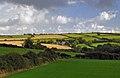Rural landscape. Wales, UK.jpg