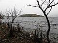 Rusheen Point, Lough Melvin - geograph.org.uk - 2133239.jpg