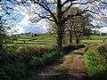Rydon Lane - geograph.org.uk - 788813.jpg
