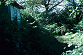 SC Ray Ashland Farm 1971 03.jpg