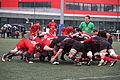 ST vs LOU espoirs 2013 (65).JPG